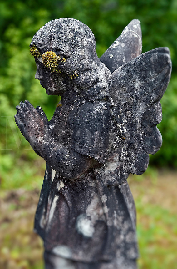 Weathered angel.
