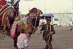 Asia, TUR, Turkey, Aegean Coast, Aegean, Soke, Camelfighter with Camel....[ For each utilisation of my images my General Terms and Conditions are mandatory. Usage only against use message and proof. Download of my General Terms and Conditions under http://www.image-box.com or ask for sending. A clearance before usage is necessary...Material is subject to royalties. Each utilisation of my images is subject to a fee in accordance to the present valid MFM-List...Contact | archive@image-box.com | www.image-box.com ]