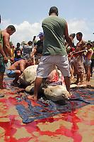 Naufrágio do Haidar leva para u Fundo 5000 cabeças de gado