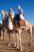 Tunisia Men on camels during the desert festival in Douz