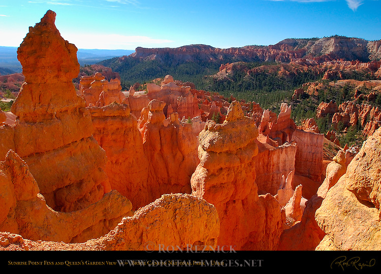 Sunrise Point Fins and Queen's Garden View, Bryce Canyon National Park, Utah