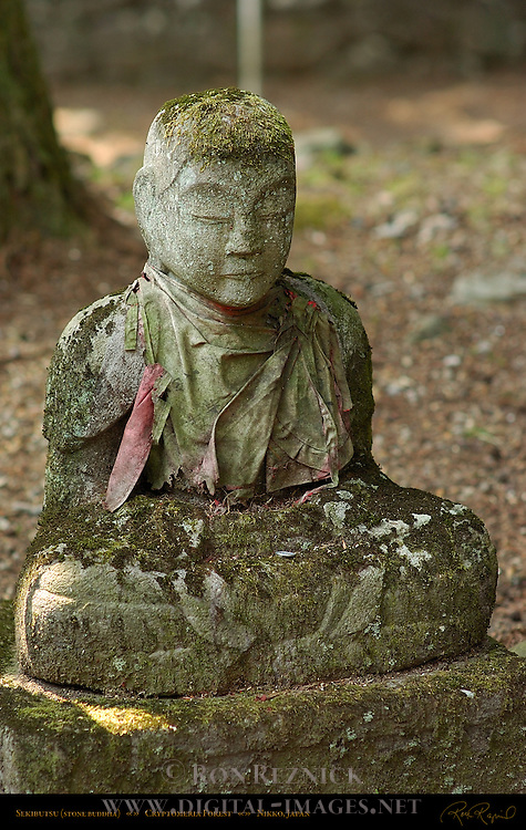 Sekibutsu Stone Buddha Protective Stone Marker Hokora Shrine Cryptomeria Forest Nikko Japan