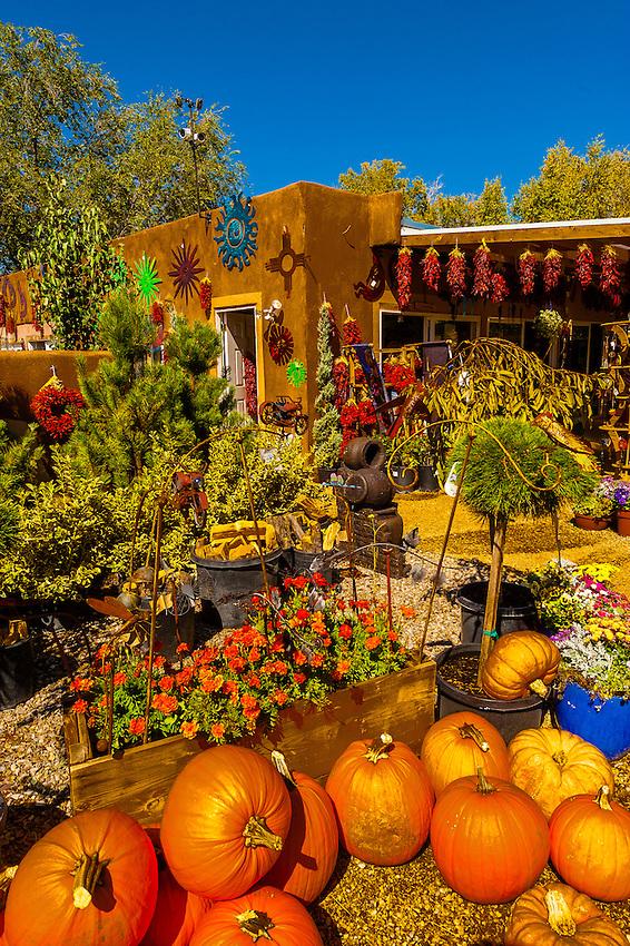 Pumpkins and ristras (drying red chile pepper pods), Jericho Nursery, Albuquerque, New Mexico USA
