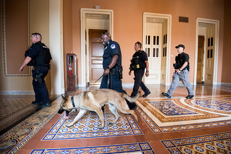 UNITED STATES - JUNE 26: U.S. Capitol Police walk through the Capitol after conducting a security sweep in advance of a visit by King Abdullah II Queen Rania of Jordan on Tuesday, June 26, 2018. (Photo By Bill Clark/CQ Roll Call)