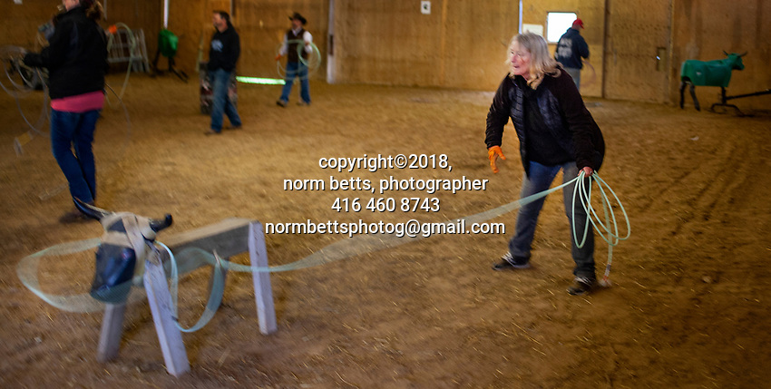 Ontario's RAM Rodeo's Build A Cowboy clinics expanded to roping this weekend at the Molinaro Ranch, just south of Acton<br /> <br /> Norm Betts<br /> normbettsphotog@gmail.com<br /> 416 460 8743