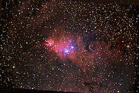 cone nebula, fox fur, fox fur nebula, nebula, emission nebula, ngc 2264