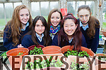 Castleisland Presentation students <br /> Ciara Murphy, Jacqueline Bonilla, Miss Niamh Kelly, Ayano Ikai, Christina O'Connor who have grown vegetables for sale in their greenhouse for their project Greener footprints which has qualified for the finals of the S.E.A.I. One Good Idea project