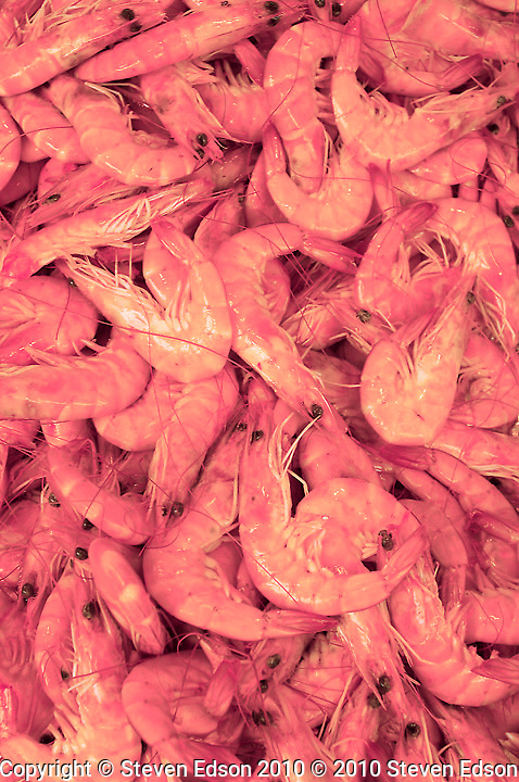 Fresh chilled shrimp at Paris street market