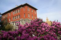 04022012-  Spring in bloom on campus with Garrand Building and the Administration Building in the background.