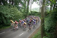race leader Andr&eacute; Greipel (DEU/Lotto-Soudal) cruises in the front of the peloton on the dangerous Dutch roads<br /> <br /> stage 3: Buchten-Buchten (190km)<br /> 29th Ster ZLM Tour 2015