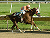 Stage Trick winning The Rosenna Stakes at Delaware Park on 10/11/10