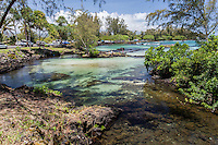 Tide pools at Richardson Beach Park, Hilo, Big Island.