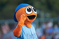 Burlington Royals mascot Bingo entertains the fans during the Appalachian League game against the Danville Braves at Burlington Athletic Stadium on July 13, 2019 in Burlington, North Carolina. The Royals defeated the Braves 5-2. (Brian Westerholt/Four Seam Images)