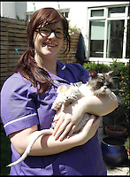 BNPS.co.uk (01202 558833)<br /> Pic: BlythwoodVets/BNPS<br /> <br /> ***Please Use Full Byline***<br /> <br /> Ele Clark with Matt the cat. <br /> <br /> Matt the cat has been given a new lease of life - after vets shaved off two carrier bags worth of fur.<br /> <br /> The mangy moggie was close to death when he was discovered abandoned in a box that had been dumped by the side of the road.<br /> <br /> After years of neglect his thick coat had grown so long it had become matted together and he was so sick he could barely muster the energy to eat.<br /> <br /> Horrified vets rushed the Persian cat onto the operating table where he was sedated - and as soon as he went under they set about removing all of his fur.