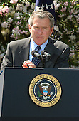 """U.S. President George W. Bush delivers remarks on the economy in the Rose Garden at the White House in Washington, DC on April 15, 2003.  The White House said in a later release """" As Americans file their income tax returns, the President encouraged Congress to provide the tax relief necessary to grow our economy and create  jobs.  The President has proposed $726 billion in tax relief to create 510,000  new jobs this year and a total of 1.4 million new jobs by the end of next year.<br /> Congress passed a budget ensuring that $550 billion of that amount can pass Congress with a simple majority vote using expedited procedures.  The President<br /> will work with Congress to ensure that the final package is at least that size and contains all the elements of his plan so the economy can grow and create as many new jobs as possible.  The President will not be satisfied until everyone looking for work can find it.""""  The President also spoke on the War with Iraq. The President said  """"Our victory in Iraq is certain, but it is not complete.  Centralized power of the dictator has ended  --  yet, in parts of Iraq, desperate and dangerous elements remain.  Forces of our coalition will engage these enemies until they surrender or until they're destroyed.   We have waged this war with<br /> determination and with clarity of purpose.  And we will see it through until the job is done.""""<br /> Credit: Ron Sachs / CNP"""