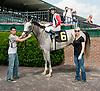 Miz Topgallant winning at Delaware Park on 7/22/13