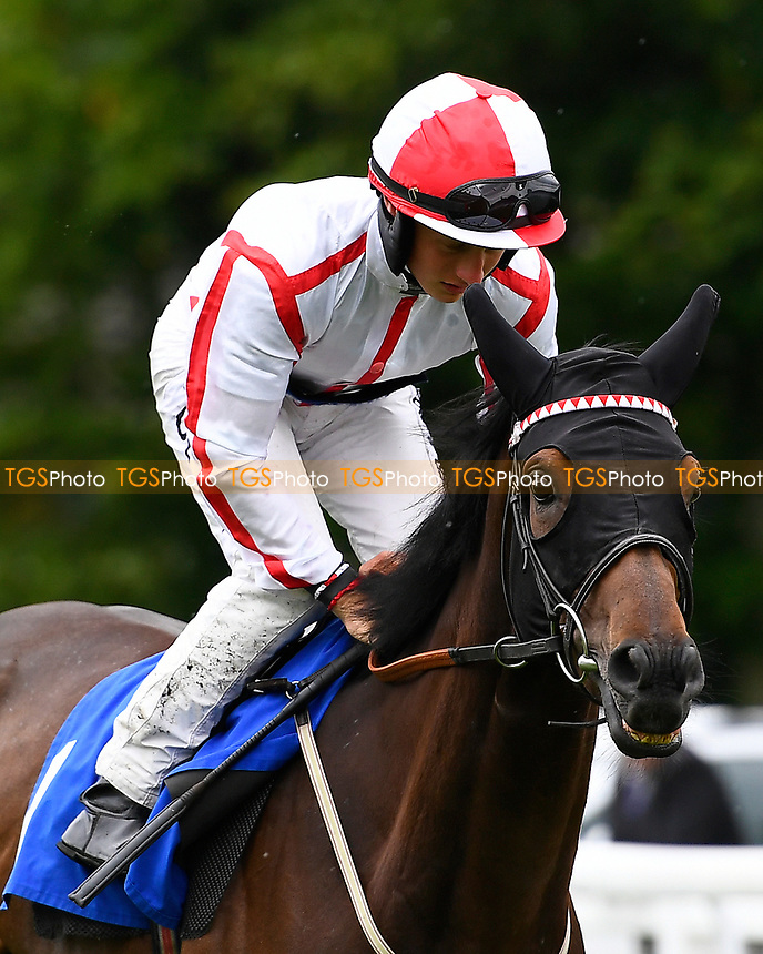 On to Victory ridden by Tom Marquand goes down to the start of The Whitsbury Manor Stud Bibury Cup Handicap,  during Whitsbury Manor Stud Bibury Cup Day Racing at Salisbury Racecourse on 28th June 2017
