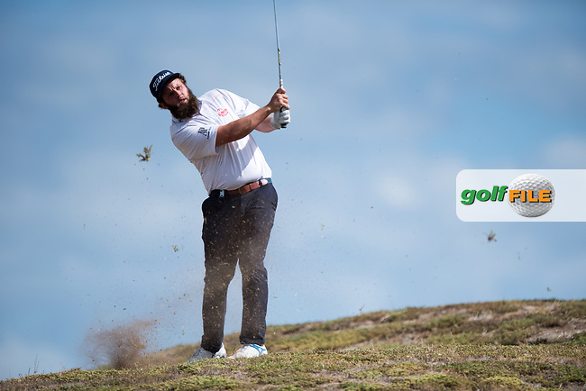 Andrew Johnston (ENG) during the 2nd round of the VIC Open, 13th Beech, Barwon Heads, Victoria, Australia. 08/02/2019.<br /> Picture Anthony Powter / Golffile.ie<br /> <br /> All photo usage must carry mandatory copyright credit (&copy; Golffile | Anthony Powter)