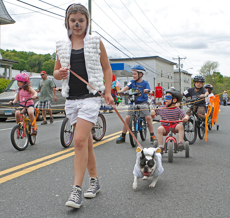 "Winsted, CT-051813MK18 Clara Koch walks her dog ""Bianca"" during the 76th annual pet parade on Main St. in Winsted on Saturday afternoon. Hundreds of people gathered along the route to cheer on the participants, pets and honorees. Michael Kabelka Republican American"