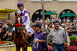 DEL MAR, CA  SEPTEMBER 3: #10 Bizwhacks, ridden by Mario Gutierrez, in the paddock of the Del Mar Juvenile Fillies Turf on September 3, 2018, at Del Mar Thoroughbred Club in Del Mar, CA. (Photo by Casey Phillips/Eclipse Sportswire/Getty Images)