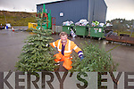 Patrick Martin worker at the North Kerry Landfill, Muignaminnane, showing where people can bring their old Christmas trees for recycling.