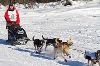 Musher Jessie Royer on Long Lake at the Re-Start of the 2011 Iditarod Sled Dog Race in Willow, Alaska.