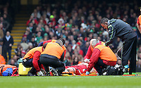 Pictured: Lee Samson of Wales injured on the ground Saturday 14 March 2015<br />