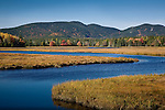 Autumn color at Bass Harbor Marsh, Acadia National Park, ME