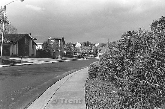 Looking down Santa Teresa Drive.<br />