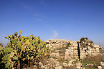 Israel, Shephelah, ruins of the Crusader fort on Titura Hill in Modiin
