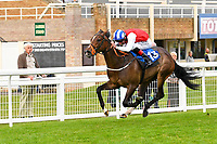 Winner of The Simpson Hilder Associates Supporting Gift Of Sight EBF Fillies' Novice Stakes, Star in the Making ridden by Adam Kirby and trained by Clive Cox  during Evening Racing at Salisbury Racecourse on 3rd September 2019