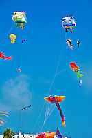 Colorful Kite Flying, playing, Santa Monica, CA, USA,