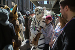 Furry Weekend Atlanta - Furries gather outside of the Westin as the St. Patrick's Day parade moves down Peachtree St...Photo by Raymond McCrea Jones