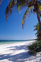 Tanzania Zanzibar Bwejuu beach