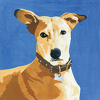 Painting of Pharaoh Hound dog