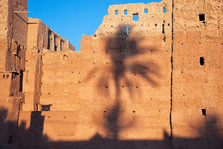 Shadow of a date palm on the wall of a kasbah.