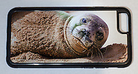 iPHONE 6 CASE $40<br />