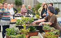 NWA Democrat-Gazette/BEN GOFF @NWABENGOFF<br /> Megan Lankford (right), Botanical Garden of the Ozarks horticulture supervisor, talks about caring for succulent plants Saturday, Jan. 12, 2019, during a 'Succulent Make and Take' class at Botanical Garden of the Ozarks in Fayetteville. Participants learned how to care for the water-conserving plants native to arid climates and made their own arrangement to take home.