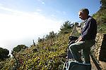 Petit train a cremaillere utilise pour les vendanges et l'entretien des vignes dans les vignobles de Monte Nero..Cinque Terre. Italie