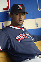 Pedro Martinez of the Boston Red Sox before a 2002 MLB season game against the Los Angeles Dodgers at Dodger Stadium, in Los Angeles, California. (Larry Goren/Four Seam Images)