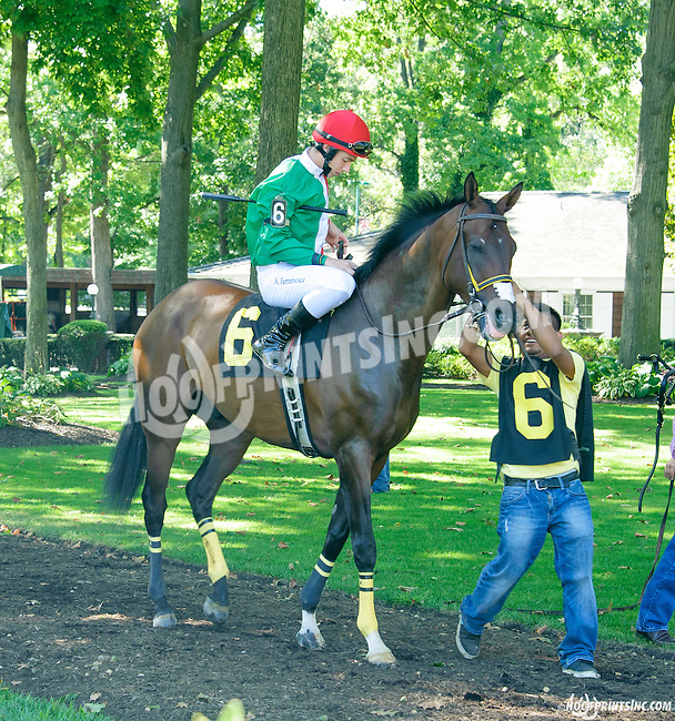 Chick's Dig Bodie before The Longines Gentlemans International Fegentri race at Delaware Park on 9/14/15 - Mr. Antonnio Ferramosca aboard