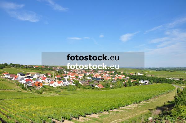 Ensheim umgeben von Weinbergen