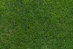 04.07.2019, Parkstadion, Zell am Ziller, AUT, TL Werder Bremen Zell am Ziller / Zillertal Tag 00<br /> <br /> im Bild<br /> Rasen, Feature, <br /> <br /> Foto © nordphoto / Ewert
