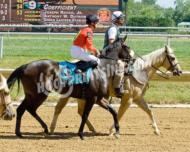 Coefficient at Delaware Park on 7/25/12