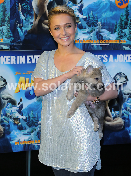 **ALL ROUND PICTURES FROM SOLARPIX.COM**                                             **WORLDWIDE SYNDICATION RIGHTS**                                                                                  Caption: Hayden Panettiere attending a photo call at the Gala Screening of Alpha and Omega.  Held at the BFI, Southbank, London, UK. 10 October 2010.                                                                              This pic: Hayden Panettiere                                                                                             JOB REF: 12272 SSD       DATE: 10_10_2010                                                           **MUST CREDIT SOLARPIX.COM OR DOUBLE FEE WILL BE CHARGED**                                                                      **MUST AGREE FEE BEFORE ONLINE USAGE**                               **CALL US ON: +34 952 811 768 or LOW RATE FROM UK 0844 617 7637**