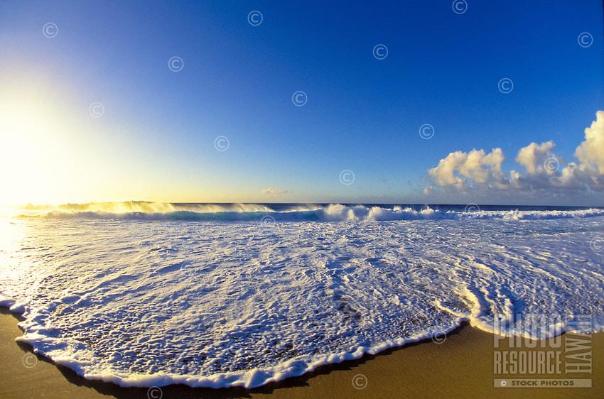Wave on beach, North Shore Oahu