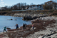 People gather near the water below large houses and mansions near the Cliff Walk National Recreation Trail in Newport, Rhode Island, on Sat., Dec. 3, 2016.