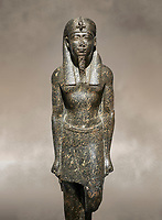 Ancient Egyptian statue of a Ptolomaic king in pharaonic regalia, granodiorire, Ptolemaic Period (332-30BC). Egyptian Museum, Turin. <br /> <br /> The Ptolomaic king is dressed a a pharaoh wearing a nemes headdress and a false beard . Drovetti Collection, Cat 1384