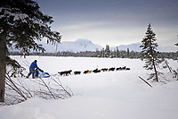 John Bakers sled dog team on trail near Finger Lake Chkpt 2006 Iditarod Finger Lake Alaska Winter