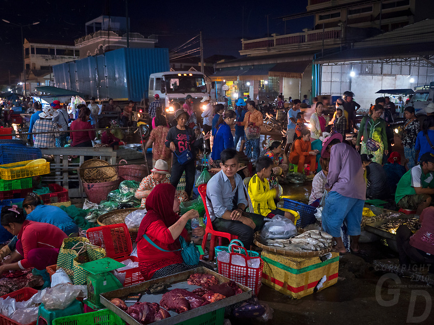 The very early morning Fish market just outside Phnom Penh, this bustling whole sale market starts around 2AM, Cambodia